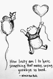Winnie the Pooh for Frank